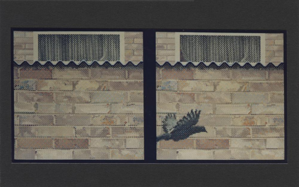 Council housing estate, brick wall, pigeon,